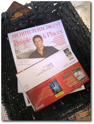 Architectural Digest in the Mail - A Dramatic Recreation