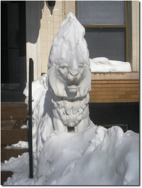 Lion with Snow Hat