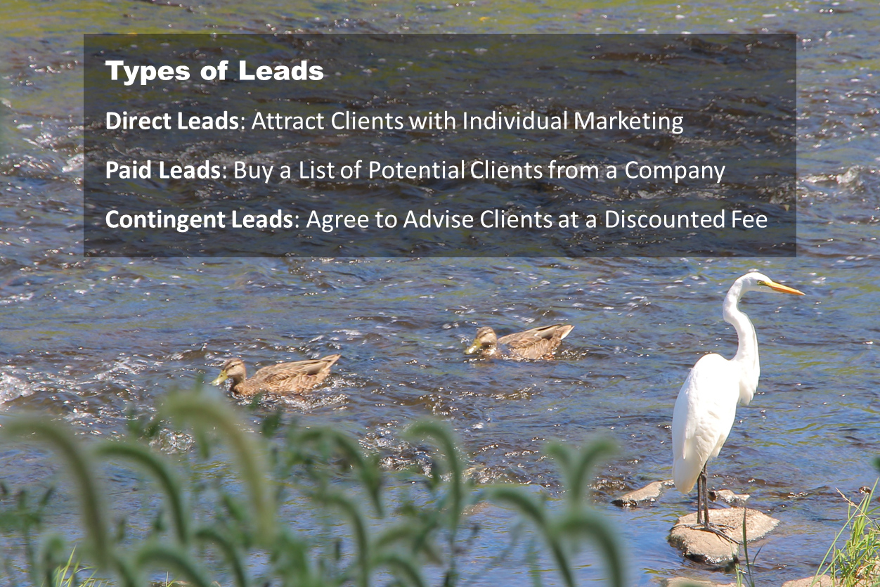 Types of Leads